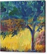 Provence Tree Canvas Print