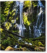 Proxy Falls Canvas Print