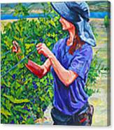 Pruning The Pinot Canvas Print