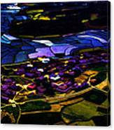 Psychadelic Aerial View Canvas Print