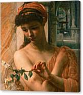 Psyche In The Temple Of Love Canvas Print