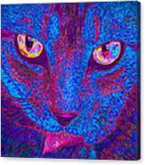 Psychedelic Kitty Canvas Print