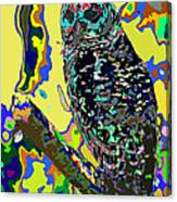 Psychedelic Owl Canvas Print