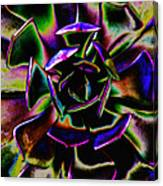 Psychedelic Rubber Plant Canvas Print
