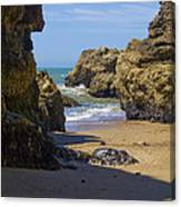 Pt Reyes National Seashore Canvas Print