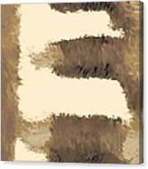 Pueblo Steps Se Canvas Print