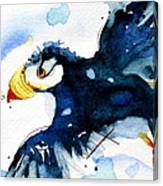 Puffin Flight Canvas Print