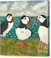 Puffin Island Canvas Print