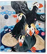 Puffins Canvas Print