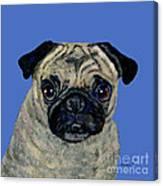 Pug On Blue Canvas Print