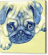Pug Puppy Pastel Sketch Canvas Print