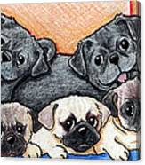 Pugs Party Of Five Canvas Print