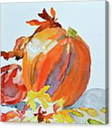 Pumpkin And Pomegranate Canvas Print