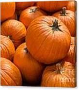 Pumpkin Background Canvas Print