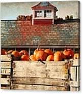 Pumpkin Crates Barn  Canvas Print