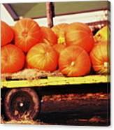 Pumpkin Load Canvas Print