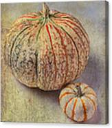 Pumpkin Textures Canvas Print