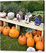 Pumpkins And Birdhouses Canvas Print