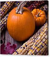 Pumpkins And Corn Canvas Print
