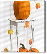 Pumpkins For Thanksgiving Canvas Print