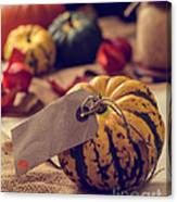 Pumpkins With Label Canvas Print