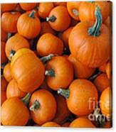 Punkin Head Canvas Print