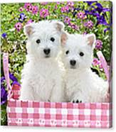 Puppies In A Pink Basket Canvas Print