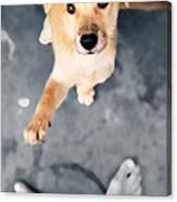 Puppy Saluting Canvas Print
