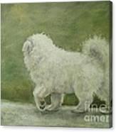 Puppy Struttin' Canvas Print