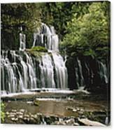 Purakaunui Falls And Tropical Canvas Print