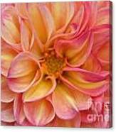 Pure Pastels Canvas Print