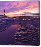 Purple After The Rain Canvas Print
