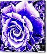 Purple And Blue Rose Expressive Brushstrokes Canvas Print