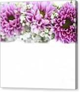 purple and mauve Flower frame on white  Canvas Print