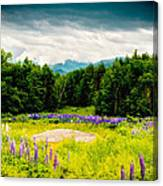 Purple And Mountains And Majesty Canvas Print