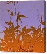 Purple And Orange Haiku Canvas Print