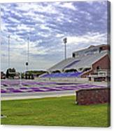 Purple And Silver Canvas Print