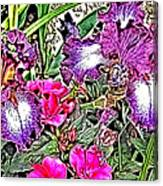 Purple And White Irises And Pink Flowers Canvas Print