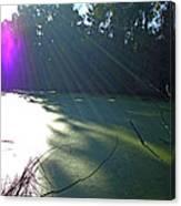 Purple Angel Of Lagoon Canvas Print