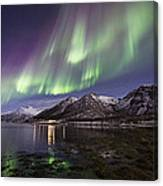 Purple Auroras Canvas Print