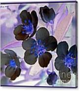 Purple Blue And Gray Canvas Print
