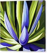 Purple Cactus Canvas Print