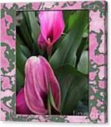 Purple Calla Lilies Canvas Print
