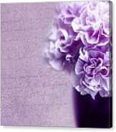 Purple Carnations Canvas Print