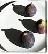 Purple Figs On A White Plate Canvas Print