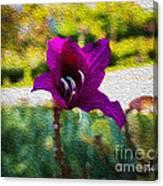 Purple Flower In Oil Canvas Print