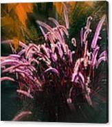 Purple Fountain Grass Fantasy Canvas Print