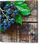Purple Grapes On A Rustic Wooden Table Canvas Print
