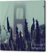 Purple Haze Daze Canvas Print