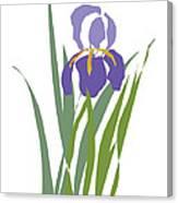 Purple Iris Stylized Canvas Print